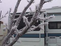 Frost in Hanford