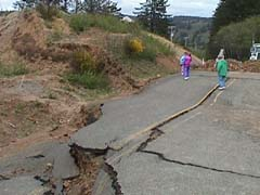fallen road at Pacific City TTN